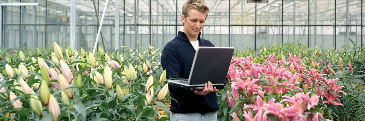Bekijk de pagina Berichtenbox voor bedrijven