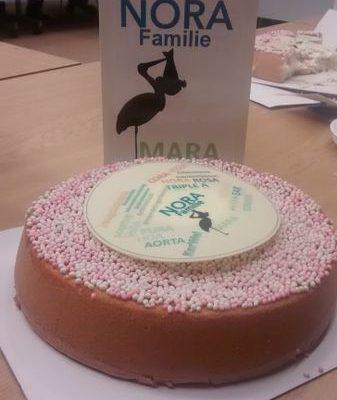 foto van taart en geboortekaartje in de NORA Gebruikersraad