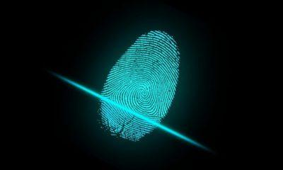 Link naar Utrecht en Eindhoven gaan digitale identiteitskaart testen