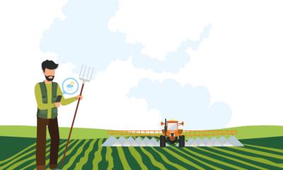 Link naar Regelhulp voor agrariërs die willen investeren in duurzame landbouw