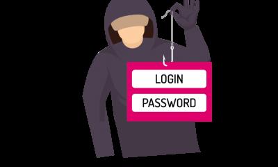 Link naar Beveiliging internetdomeinen overheid vereist aandacht