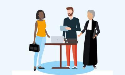Link naar RvS past toetsing wetten aan op digitalisering